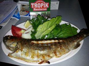Ulupınar Tropik Restoran (4)