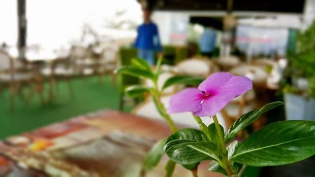 Muhtarın Yeri Cafe Restaurant Alanya Kalesi (14)
