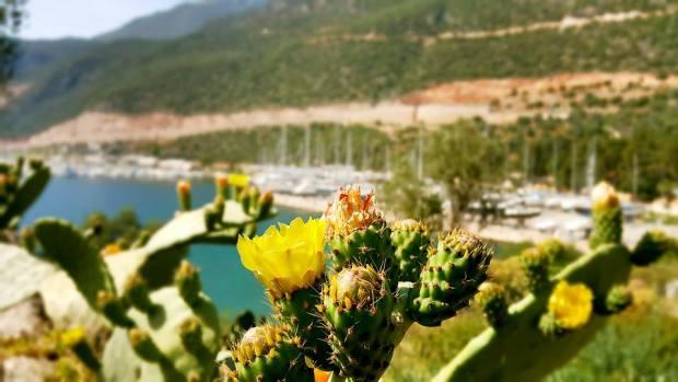kaş kalkan doğal güzellikler manzara antalya kaş kalkan gezilecek yerleri (4)