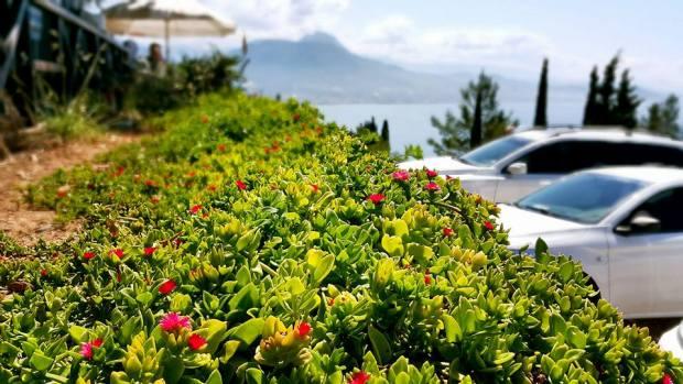 Alanya Kahvaltı Yerleri - 0242 513 5188 Muhtarın Yeri (Muhtar's Place) Alanya Kalesi (1)