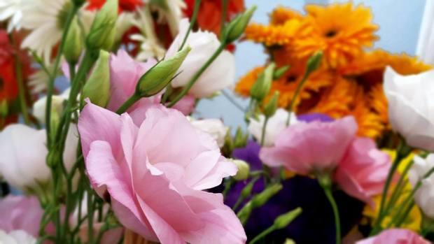 Antalya Işıklarda Çiçekçi - 0538 9692901 Gülşen Çiçek Evi (28)