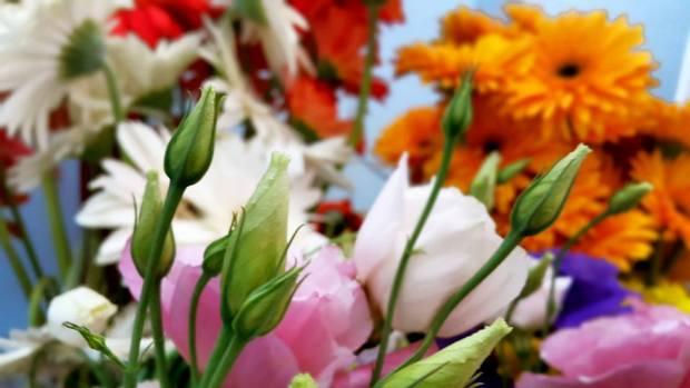 Antalya Işıklarda Çiçekçiler - 0538 9692901 Gülşen Çiçek Evi (26)