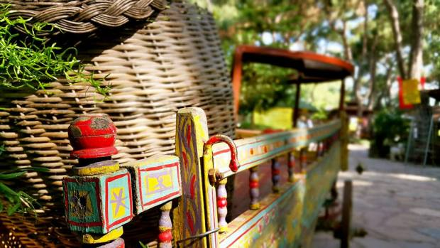 Paşa Kır Bahçesi Çakirlar - 0242 4394747 - Antalya Van Kahvaltısı Çakırlar Kahvaltı Yerleri (28)