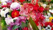 antalya çiçek sipariş 0242 3453210 çiçek gönderme orgil çiçekçilik (12)