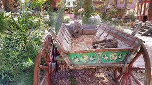 Antalya Köy Kahvaltısı - 0242 4394747 - Çakırlar Gzöleme Bazlama Paşa Kır Bahçesi Çakirlar (24)