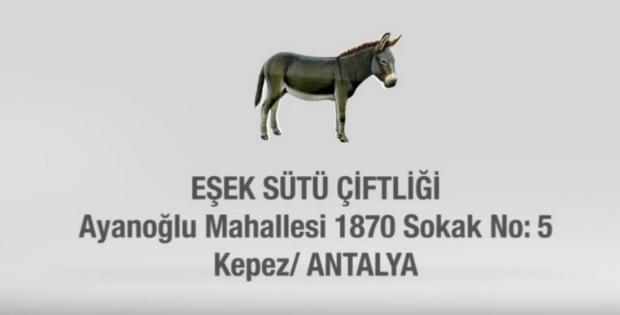 Eşek Sütü Çiftliği Antalya