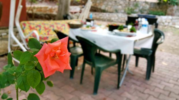 meselik-restoran-antalya-raki-balik-zengin-meze-cesitleri-alkollu-restaurantlar-serpme-kahvalti-7